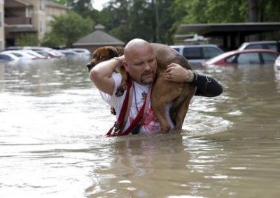 houston stronger Mans Best Friend