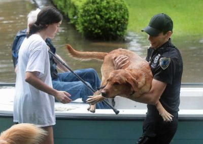 Houston Stronger Cop Saves Dog